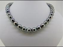 南洋黒蝶真珠ネックレス(11.3-8.6mm)